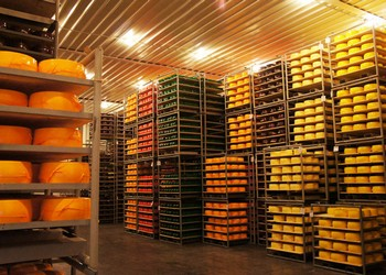 Оборудование для изготовления сыра