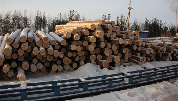 Производство изделий из дерева